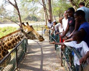 Tourism nairobi