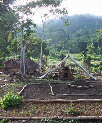 Legend's Eseka camp in Cameroon