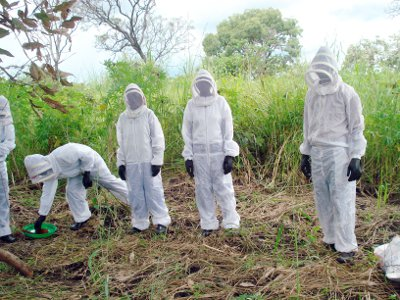 Honey Care Africa staff helping farmers in rural Kenya harvest honey