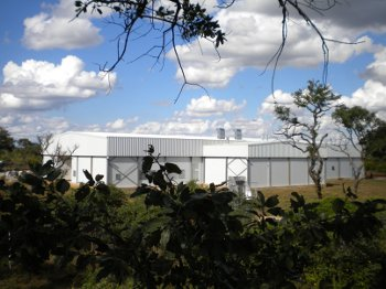 Astral Foods' TIGERChicks hatchery in Zambia