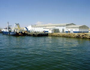A new pre-sorting facility and ice manufacturing plant for the fishing industry in Walvis Bay, Namibia.