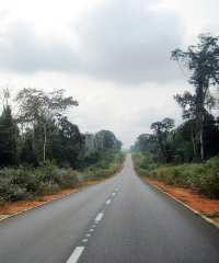 According to the AfDB, asphalted roads represent less than 20% of Central Africa's entire regional road network.