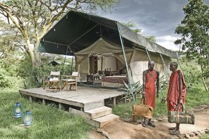 A guest tent at one of Gamewatchers Safaris's camps nearby the Maasai Mara National Reserve.
