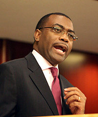 Akin Adesina, Nigeria's new agriculture minister.