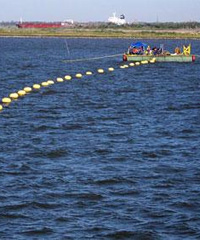 Seacom's submarine cable