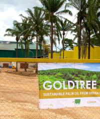 Goldtree palm oil mill, Sierra Leone
