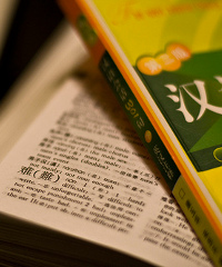 South Africa will introduce Mandarin into its school curriculum.