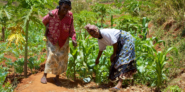 Local agricultural production cannot cater for Kenya's food demand.
