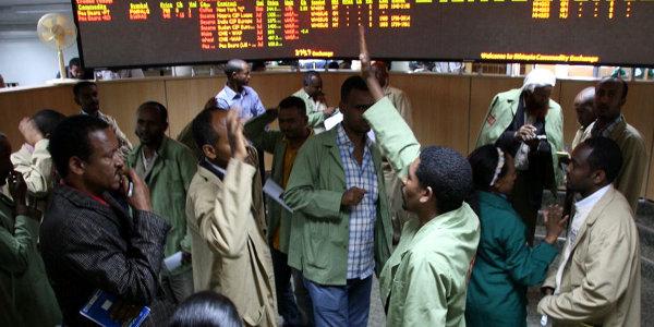 The trading floor of the Ethiopia Commodity Exchange