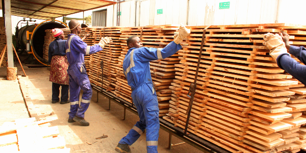 Timber is treated for insect attack and then dried in the kilns behind.
