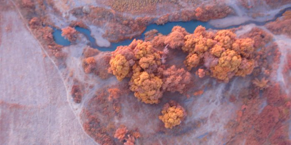 An image taken by a drone over potential farmland in northern Nigeria.
