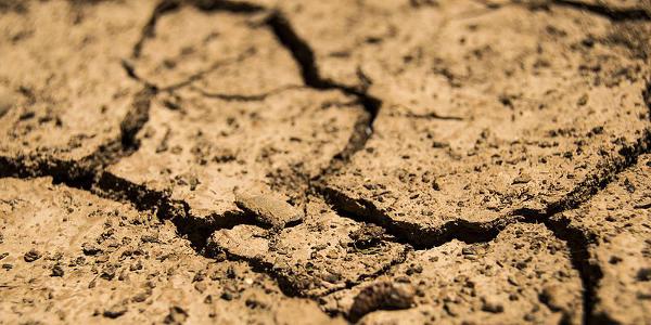 Drought 600x300