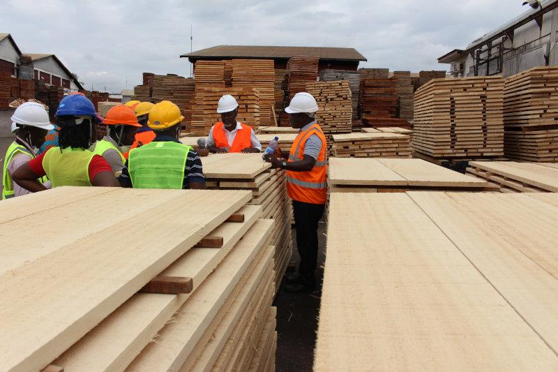 A lumber yard in Kumasi, Ghana