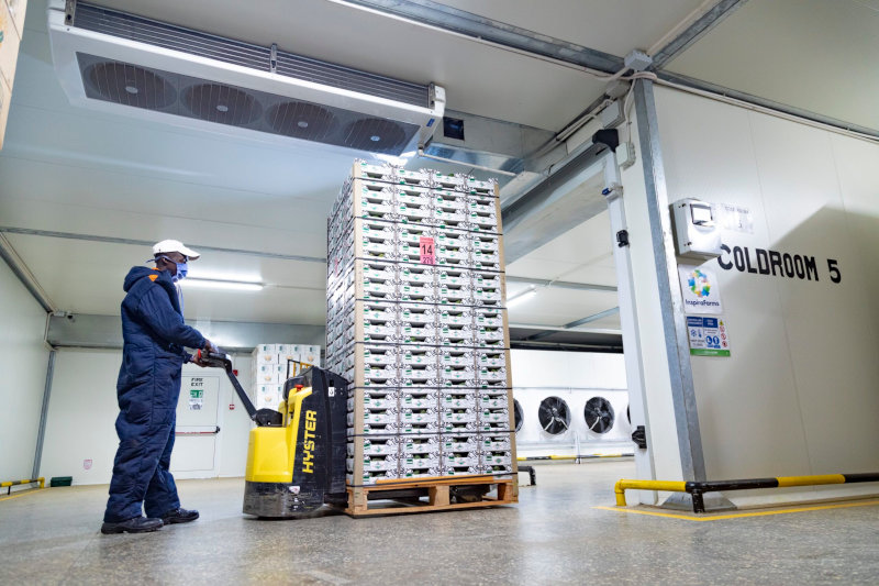 InspiraFarms designs and supplies cold-storage solutions for fresh produce companies in Africa.