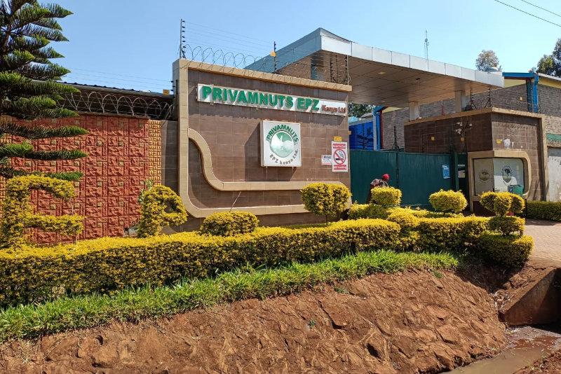 Privamnuts's factory.