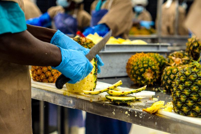 Processing pineapples in Ghana.