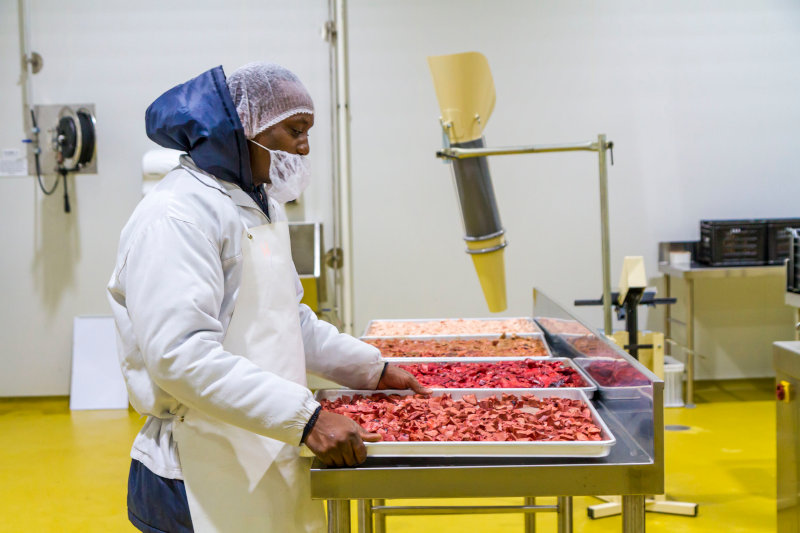 An employee at Maneli Pets' factory.